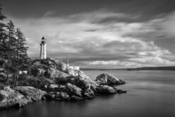 Lighthouse-Park-West-Vancouver-Blanco-y-Negro-Jonathan-Mondragon